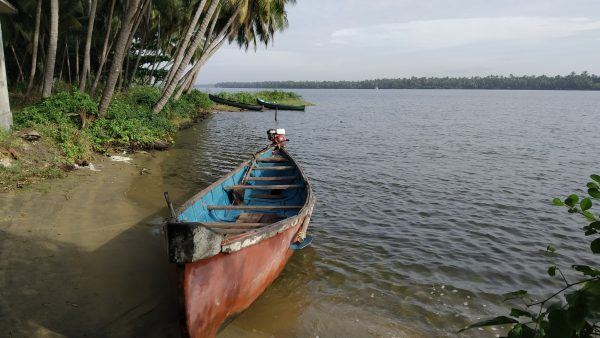 Canoe - survival island