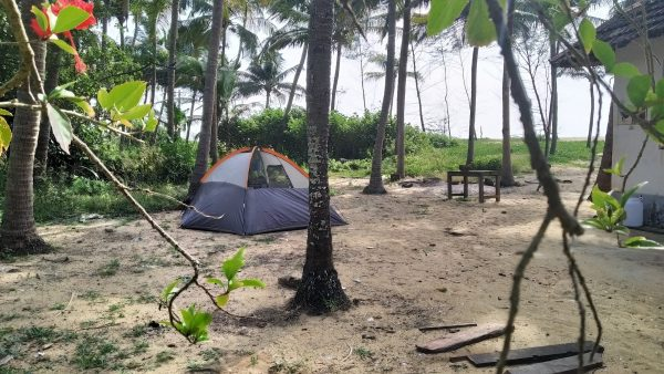 Tent at survival island
