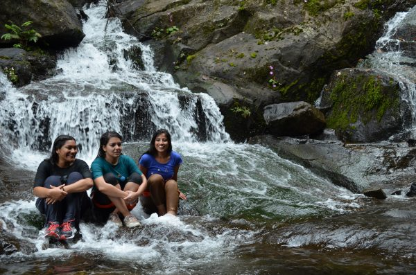 Wayanad-waterfalls