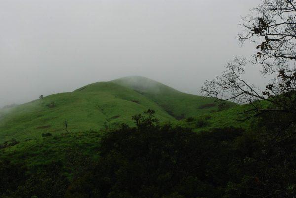 Rolling Hills in distance - Nethravathi Peak Trek